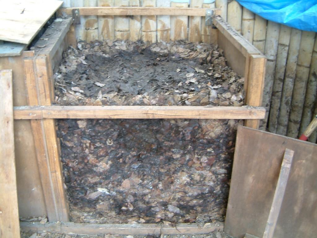 落葉堆肥化 002